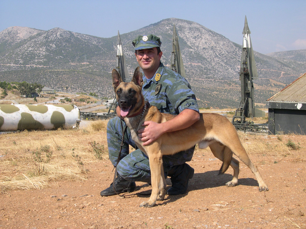 military-working-dog-expert
